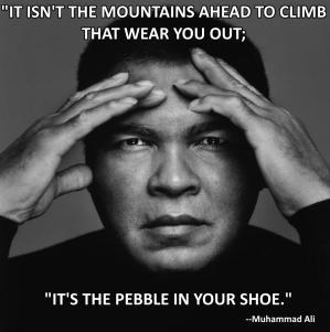pebble-in-shoe-ali-face